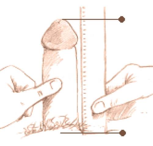 Cum să-ți măsori corect penisul