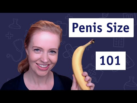 tipurile de localizare a penisului apare o erecție cu masajul prostatei