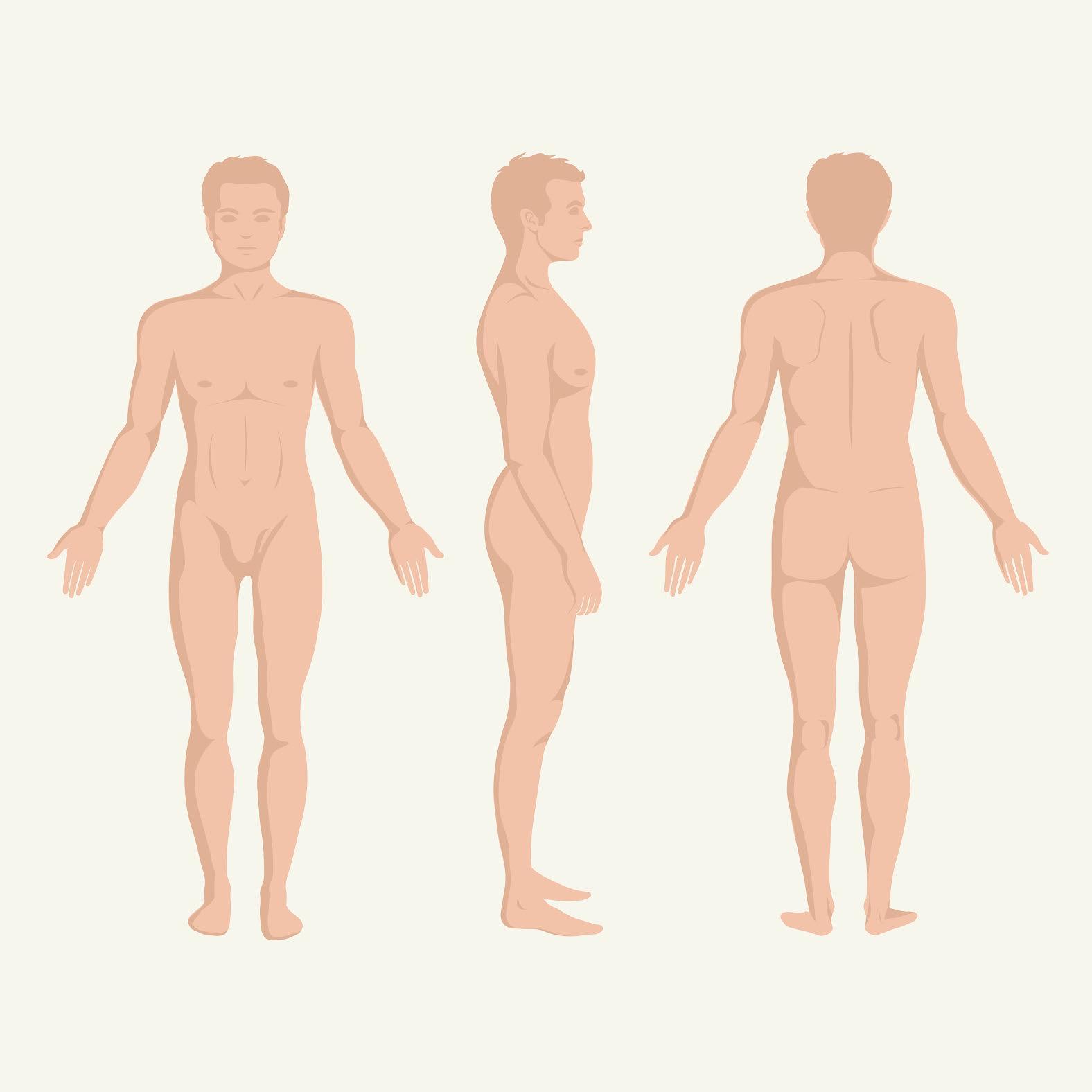 grosimea penisului la bărbați