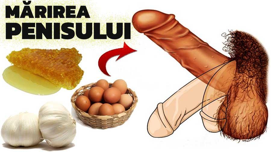 inelele penisului pentru a prelungi actul sexual