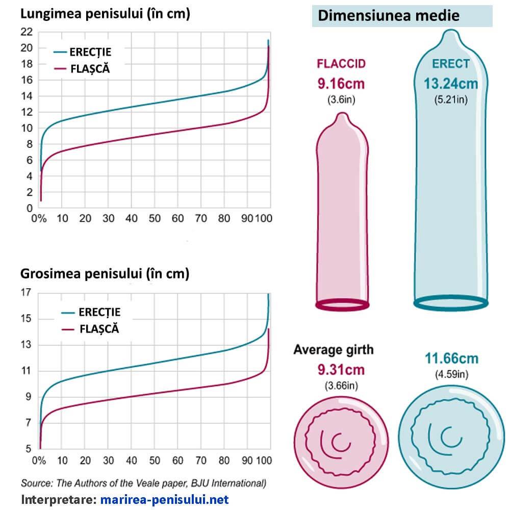 penisul se micșorează de- a lungul anilor creșterea circumferinței penisului