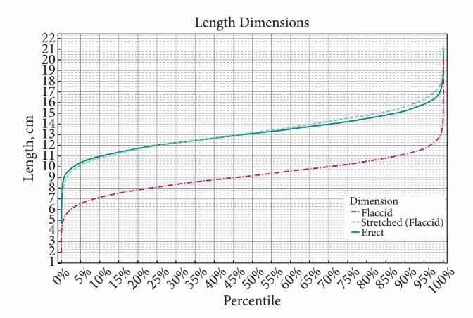 Mărimea medie a unui PENIS în România și în alte țări - STUDIU - cazare-albac.ro