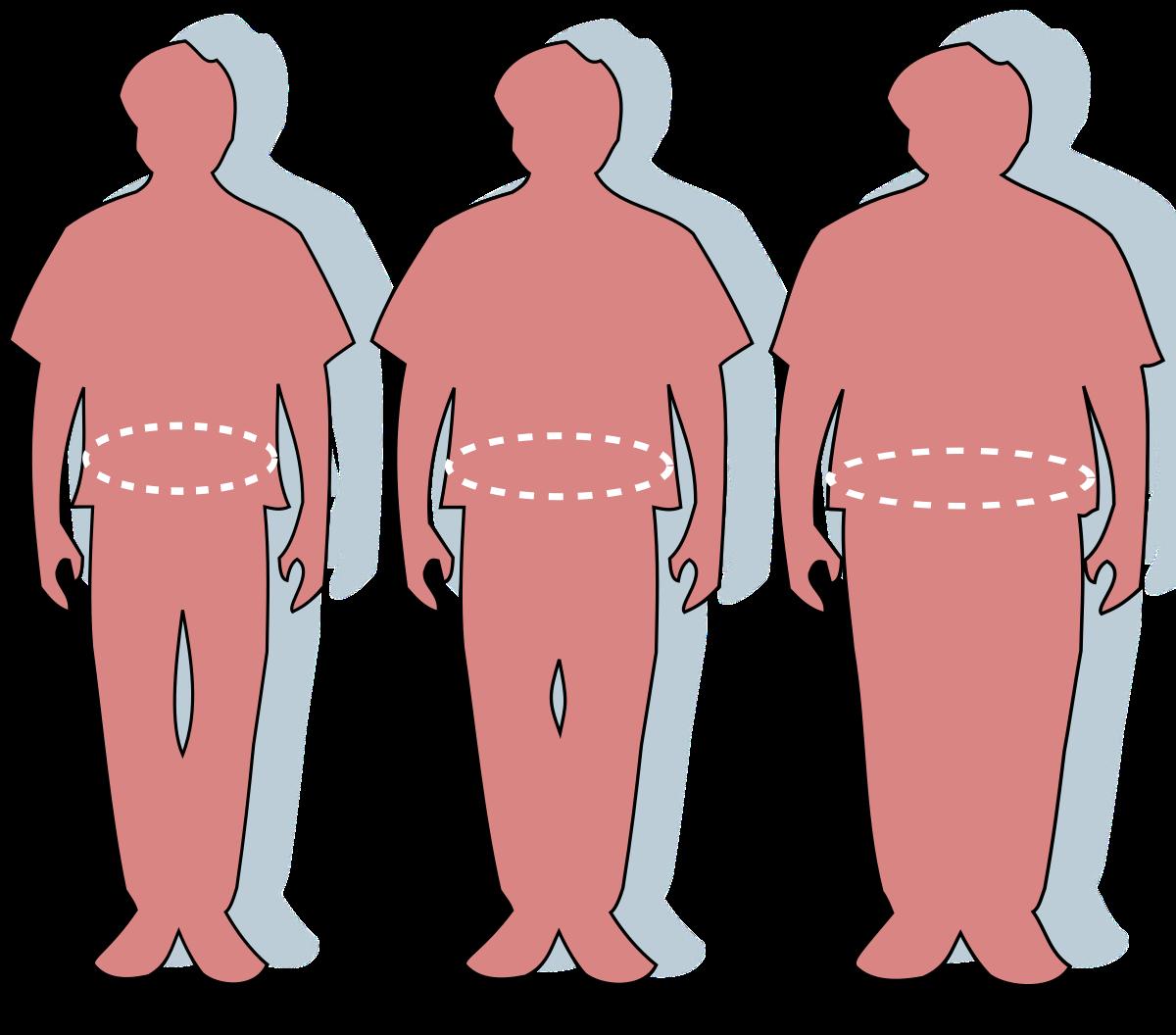 obezitatea penisului cade după erecție