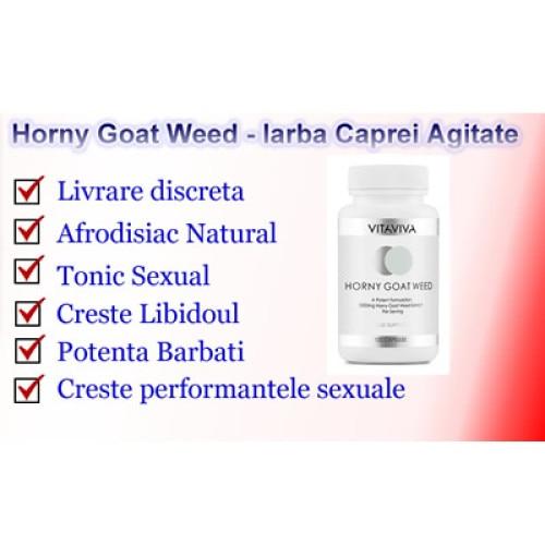 iarbă pentru a restabili erecția prostatita ajută la erecție