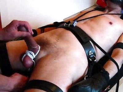 tortura penisului și a mingii ce este necesar pentru durata unei erecții