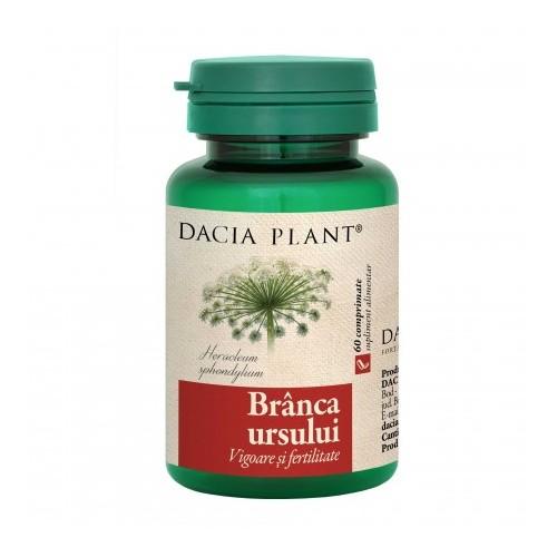 ceai de plante pentru a crește erecția