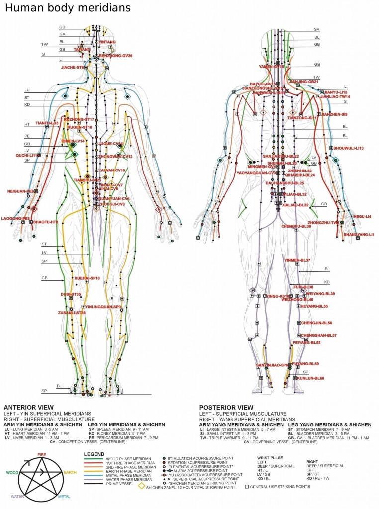 puncte de erecție pe corpul uman